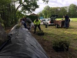 05-25-2019-Vogelstangengelände gereinigt (19)